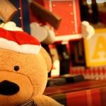 Teddy Bear & Toys | ISO 400 | 1/125 | f/1.4
