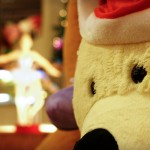 White Polar Bear & The Dancing Doll   ISO 800   1/45   f4