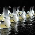 Paper Swan - Floating!